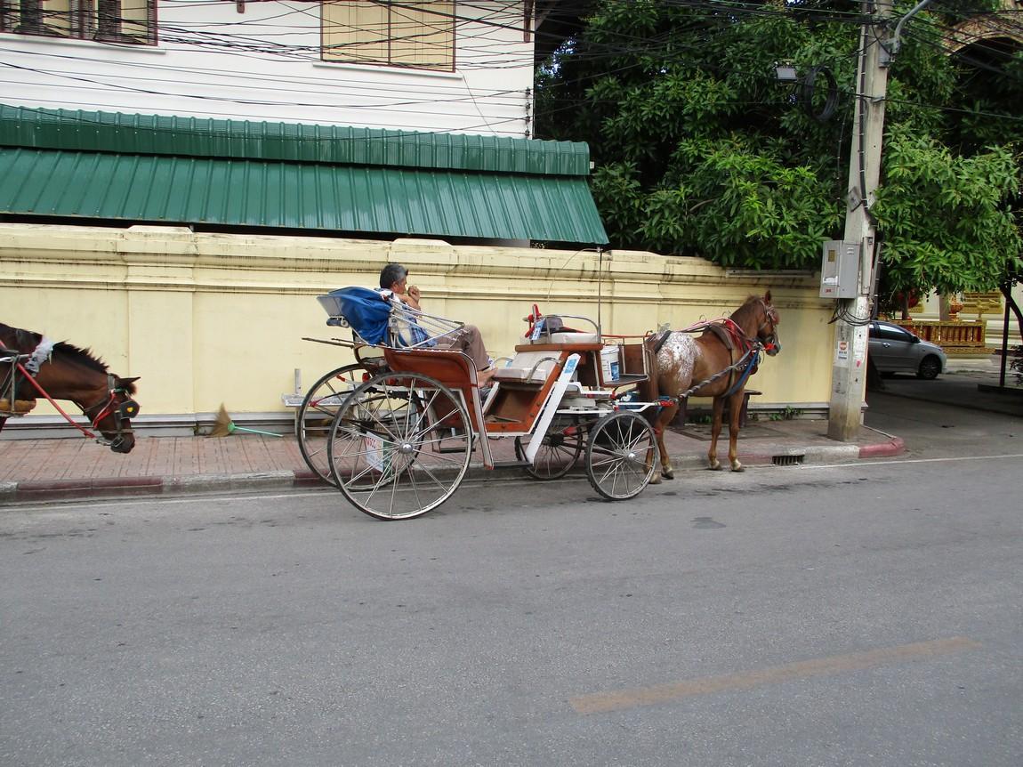 10-pin-hotel-lampang-4-horse.