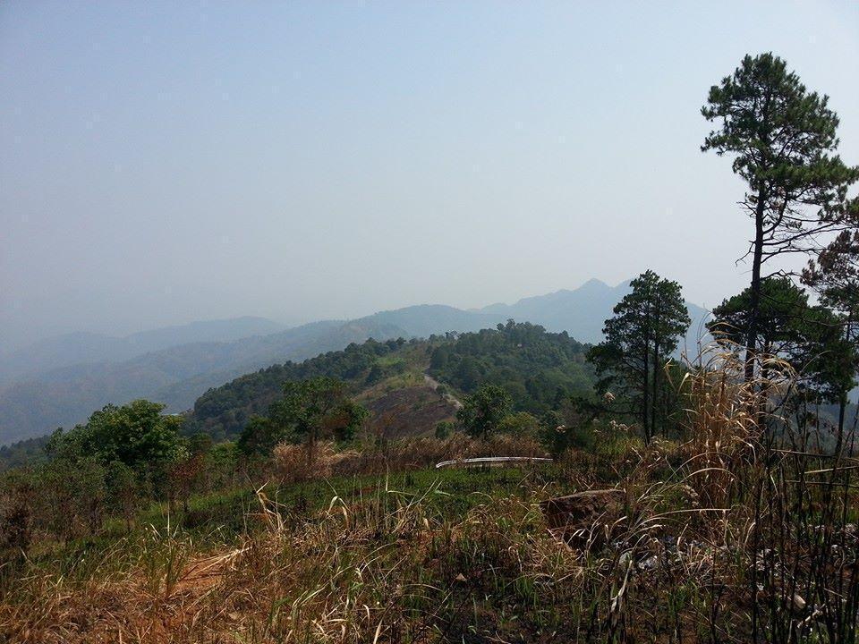 10007045_10152330512785631_698514189710510003_n_zpsb9b730ae.jpg /Chiang Rai to Mae Sai on the scenic 1149 via Doi Tung./Touring Northern Thailand - Trip Reports Forum/  - Image by: