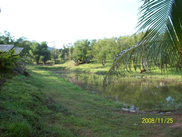 100_1083.jpg /Udon Mae Hong Son Loop Day 1/N.E. Thailand Motorcycle Trip Report Forums/  - Image by: