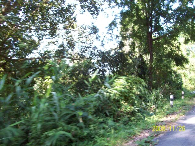 100_1137.jpg /Udon Mae Hong Son Loop day 2/N.E. Thailand Motorcycle Trip Report Forums/  - Image by: