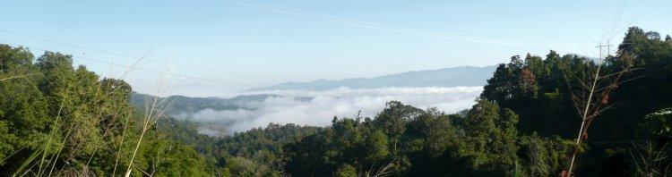 1150-fog-wiang-pa-pao.