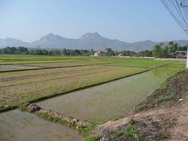 1252a.jpg /Phayao - Chiang Mai: The Long Way Home - 120 1035 1252 118/Touring Northern Thailand - Trip Reports Forum/  - Image by: