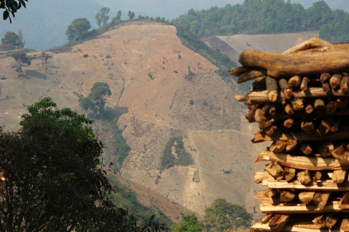 140306-PCQ-deforestation4.jpg