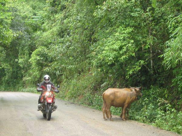 19711843-M.jpg /Mae Hong Son Loop/Touring Northern Thailand - Trip Reports Forum/  - Image by: