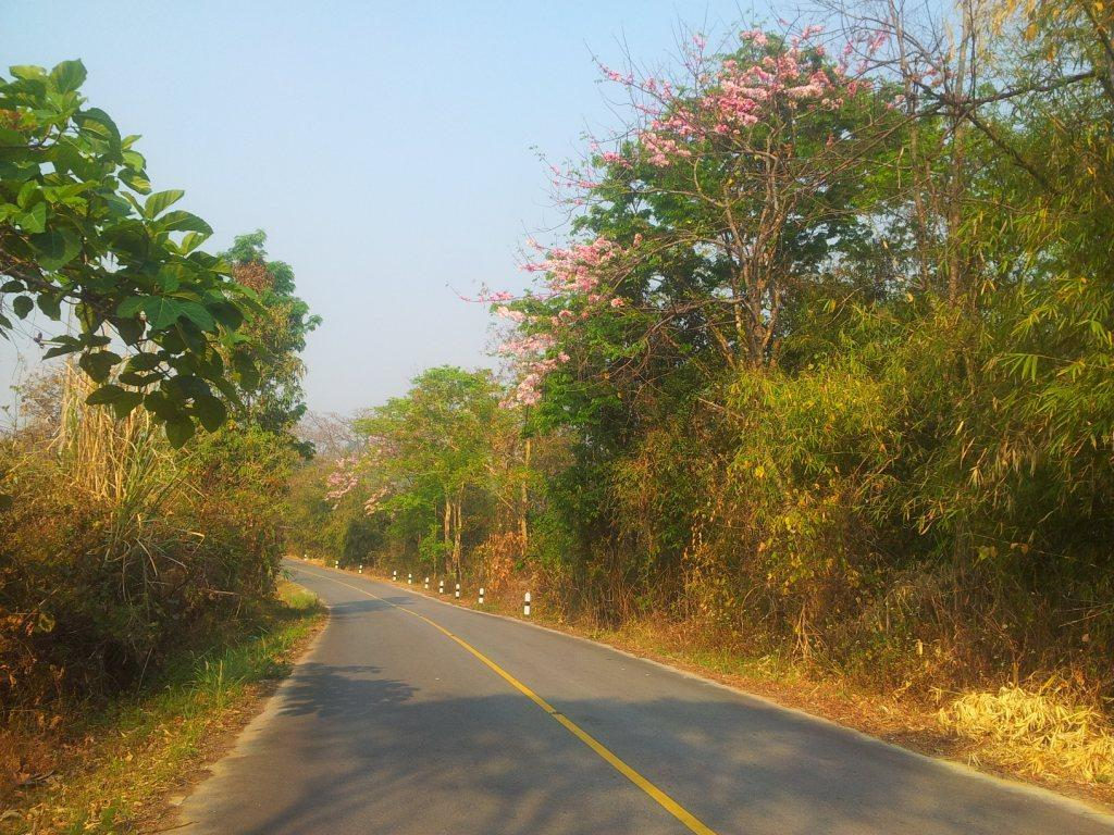 2014-03-07090441.jpg /LICME and a little test ride/Touring Northern Thailand - Trip Reports Forum/  - Image by: