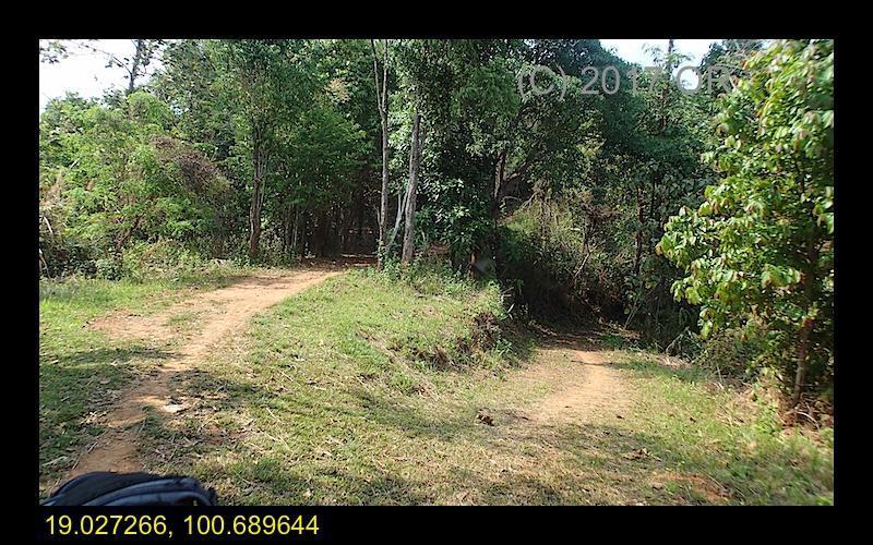 2017-4 Nanthaburi NP 11.