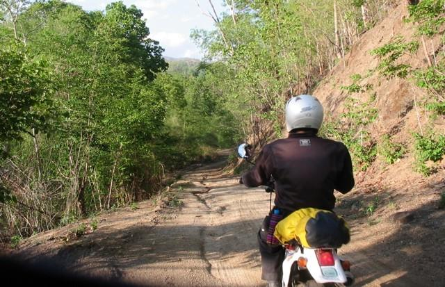 21899709-L.jpg in The MHS Loop: Checking Dirt Roads  Trails from  DavidFL at GT-Rider Motorcycle Forums