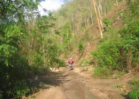 21902171-L.jpg in The MHS Loop: Checking Dirt Roads  Trails from  DavidFL at GT-Rider Motorcycle Forums