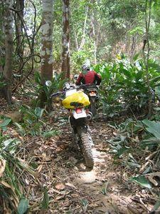 22517378-S.jpg in The MHS Loop: Checking Dirt Roads  Trails from  DavidFL at GT-Rider Motorcycle Forums