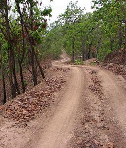 22517394-S.jpg in The MHS Loop: Checking Dirt Roads  Trails from  DavidFL at GT-Rider Motorcycle Forums