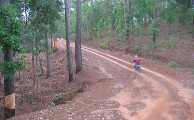 23022475-S.jpg in The MHS Loop: Checking Dirt Roads  Trails from  DavidFL at GT-Rider Motorcycle Forums