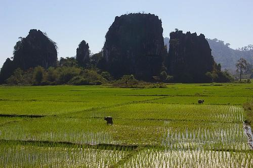 2317737653_ff50cc8462.jpg /LAOS by XR 250 - North Loop/Laos Road  Trip Reports/  - Image by: