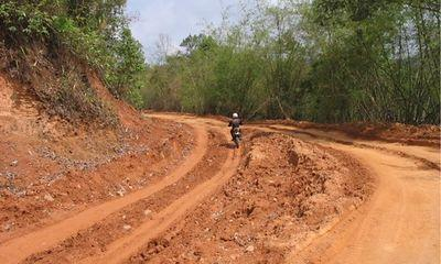 23187278-S.jpg in The MHS Loop: Checking Dirt Roads  Trails from  DavidFL at GT-Rider Motorcycle Forums
