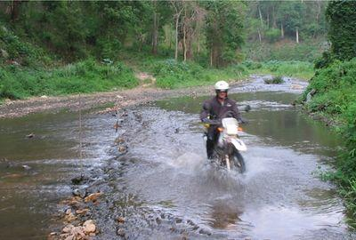 23187320-S.jpg in The MHS Loop: Checking Dirt Roads  Trails from  DavidFL at GT-Rider Motorcycle Forums