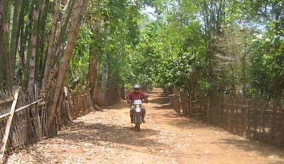 23191617-S.jpg in The MHS Loop: Checking Dirt Roads  Trails from  DavidFL at GT-Rider Motorcycle Forums