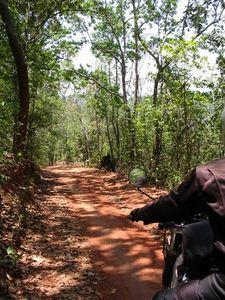 23191738-S.jpg in The MHS Loop: Checking Dirt Roads  Trails from  DavidFL at GT-Rider Motorcycle Forums