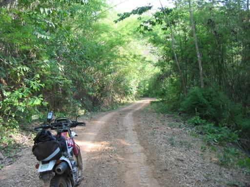 25563138-M.jpg in The MHS Loop: Checking Dirt Roads  Trails from  DavidFL at GT-Rider Motorcycle Forums