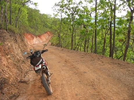 25563145-M.jpg in The MHS Loop: Checking Dirt Roads  Trails from  DavidFL at GT-Rider Motorcycle Forums