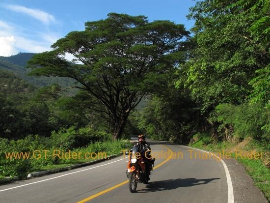259164=15773-img_8136_0.jpg /Wet season: pottering around the Mae Hong Son Loop/Touring Northern Thailand - Trip Reports Forum/  - Image by: