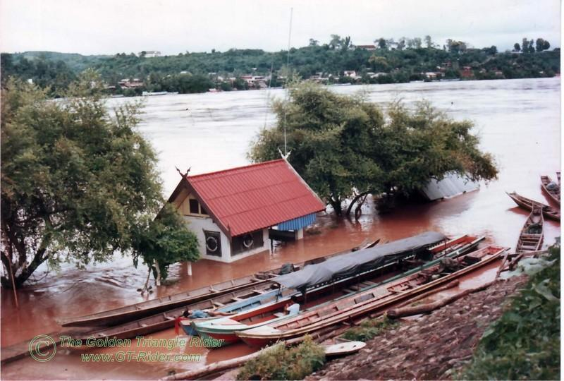 293374370_6ann2-L.jpg /1991  94 The Floods + some oldies for ya to ponder./Golden Oldies/  - Image by:
