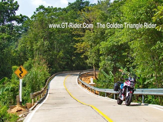 299333=19234-GTR-DoiTaengCoffee_05.
