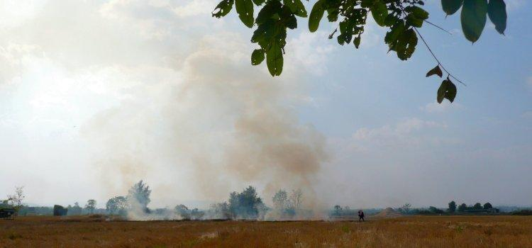 5-rice-stubble-fires.