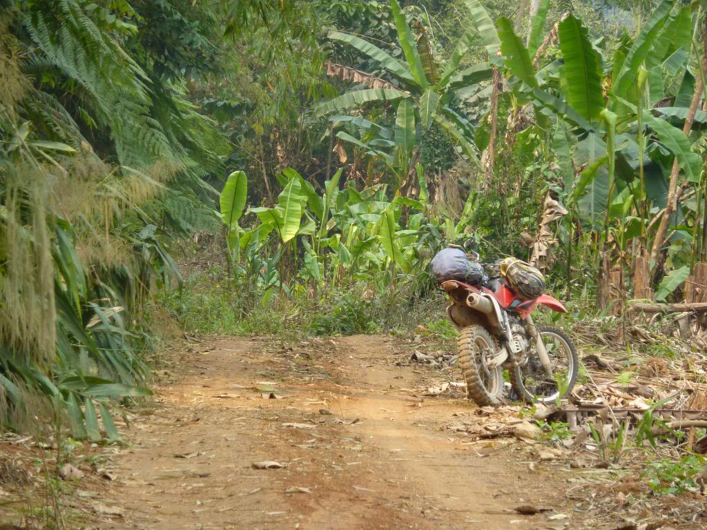 691.jpg /We could not find the New Road Xieng Dao area/Laos - General Discussion Forum/  - Image by:
