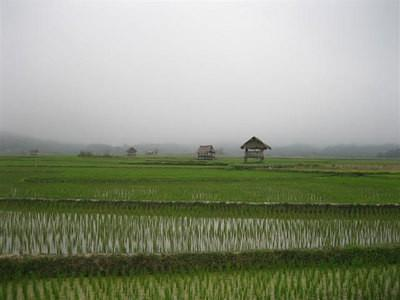 75631060-S.jpg /Three Months With Motorbike in South-East Asia/Global Trip Reports/  - Image by: