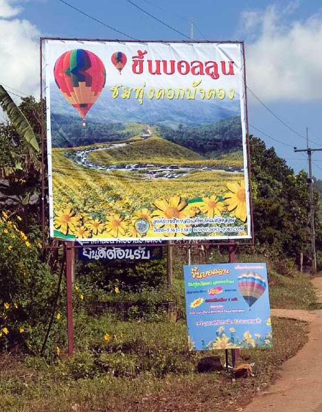 BalloonLR.jpg /Sunflower Season/Touring Northern Thailand - Trip Reports Forum/  - Image by: