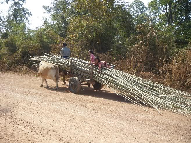 Ban-Lung-Cambobia18.