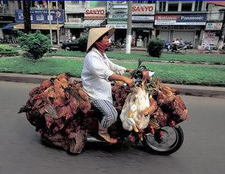 bike_burden-fowl.