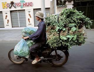 bike_burden-veggies.