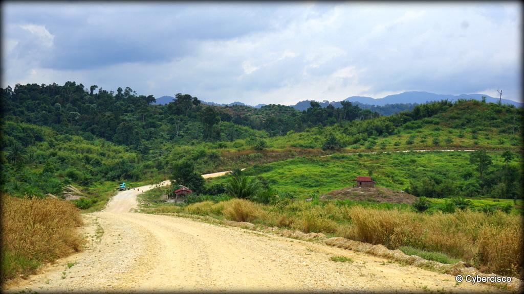 Bokpyin-Kawthaung-011.