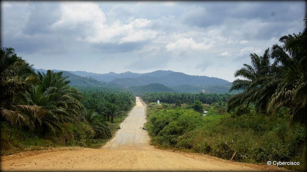 Bokpyin-Kawthaung-013.