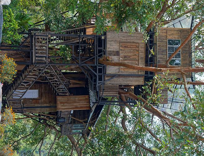 chaeson-park-tree-house-small.
