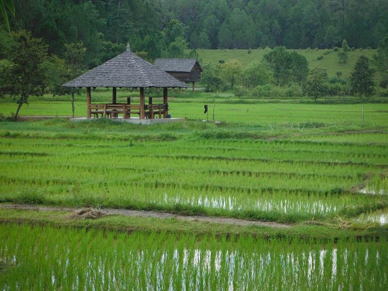 Chiang%20mai%20Pai%20Thailand%2022.