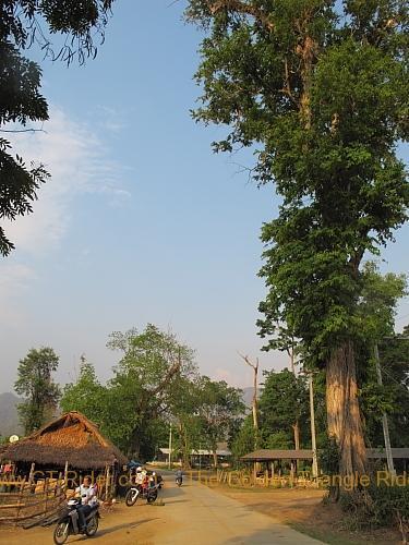 chiang-dao-muang-khong-002.