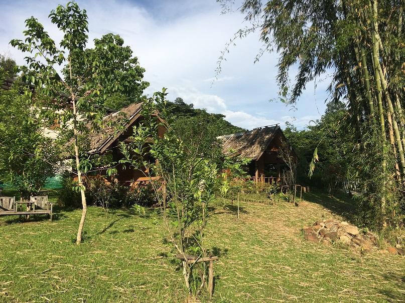 Chiang Dao Pai (5).