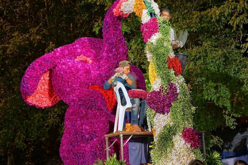 chiang-mai-flower-festival-04-small.