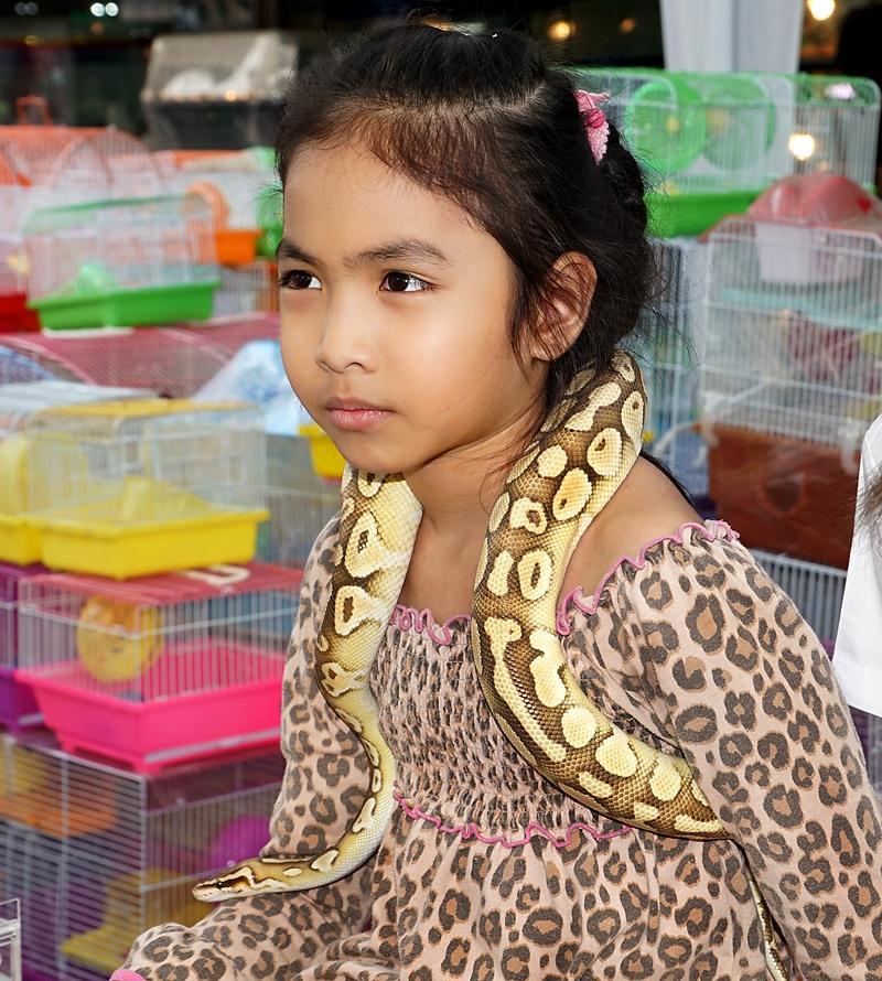 chiang-mai-snake-child-small.