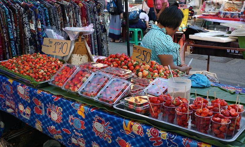 chiang-mai-strawberry-small.