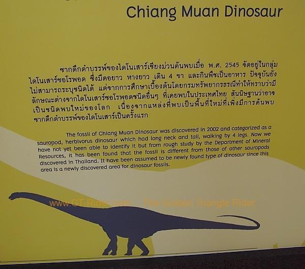 chiang-muan-dinosaur-park-003.