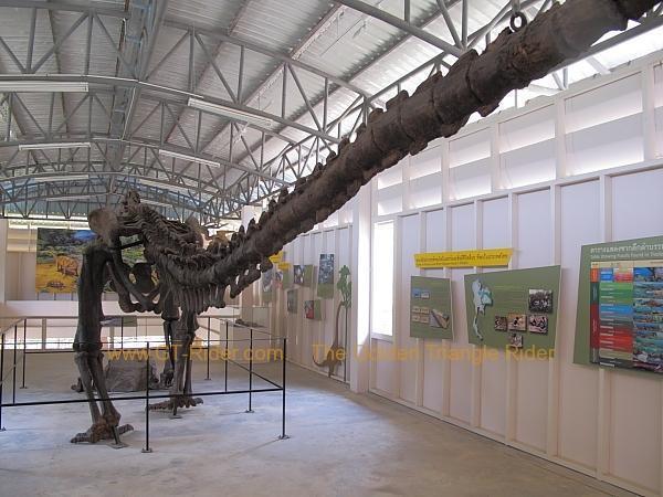 chiang-muan-dinosaur-park-006.