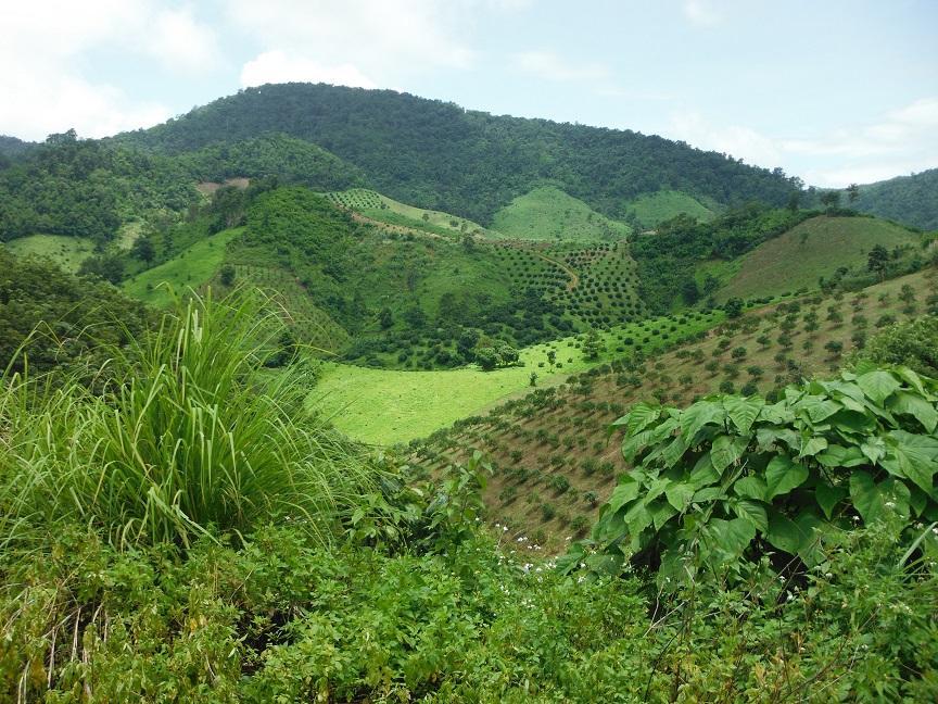 Chiang Rai  (6).JPG