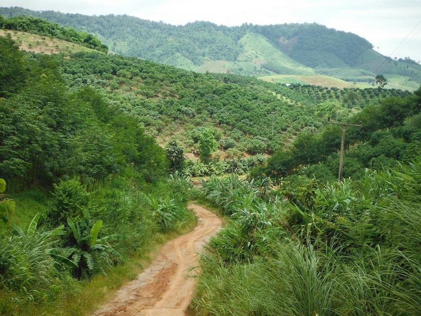 Chiang Rai  (8).JPG