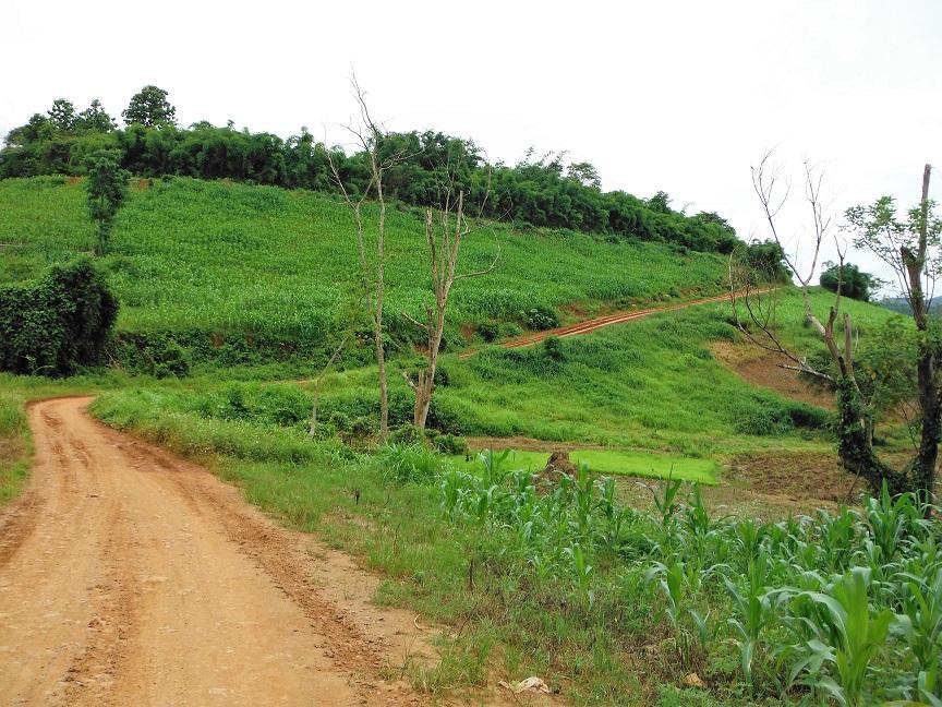 Chiang Rai Wawi Dirt Ride (10).JPG