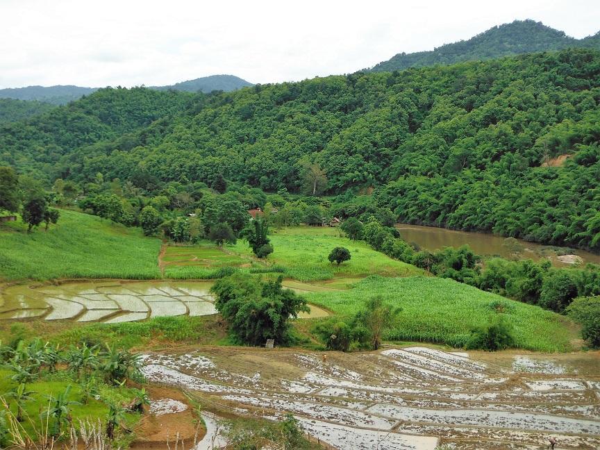 Chiang Rai Wawi Dirt Ride (12).JPG