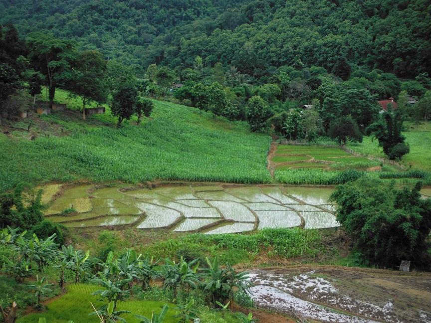 Chiang Rai Wawi Dirt Ride (13).JPG
