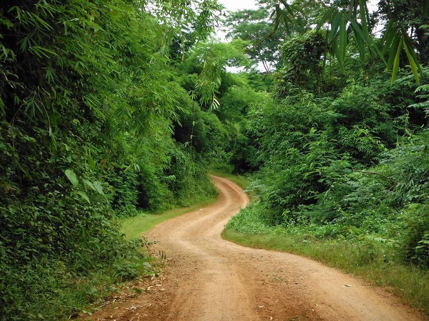 Chiang Rai Wawi Dirt Ride (15).JPG