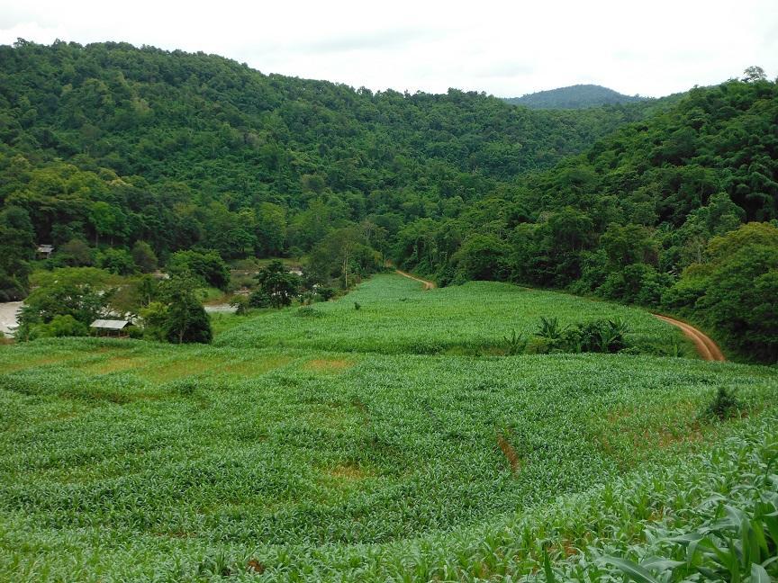 Chiang Rai Wawi Dirt Ride (16).JPG